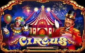 Circus videoslot Playson